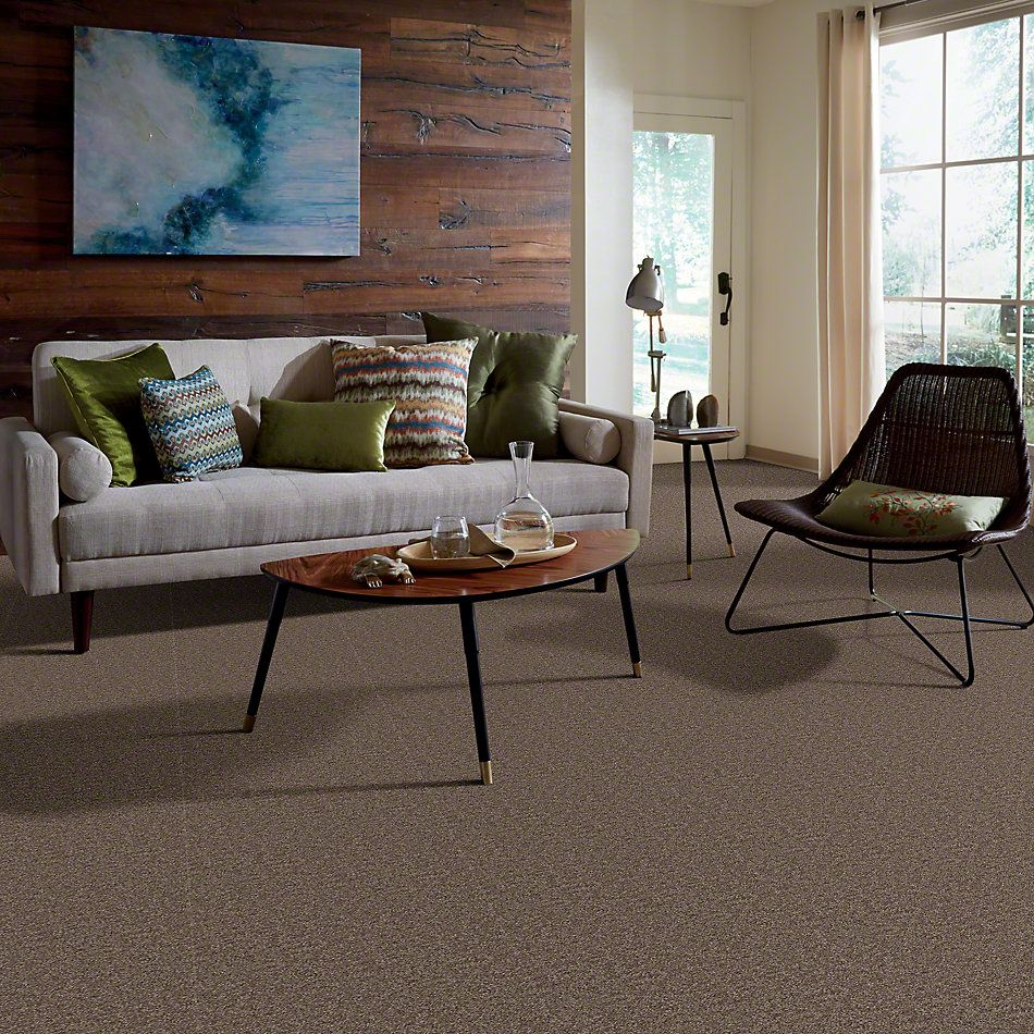 Shaw Floors Home Foundations Gold Fast Ball 15′ Cattail 00702_HGL46