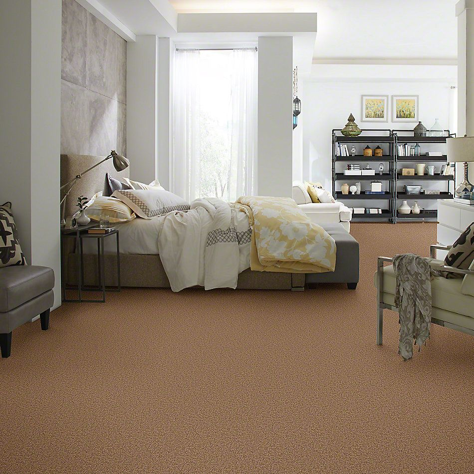Shaw Floors Shaw Flooring Gallery Gibson Brown Sugar 00702_Q259G
