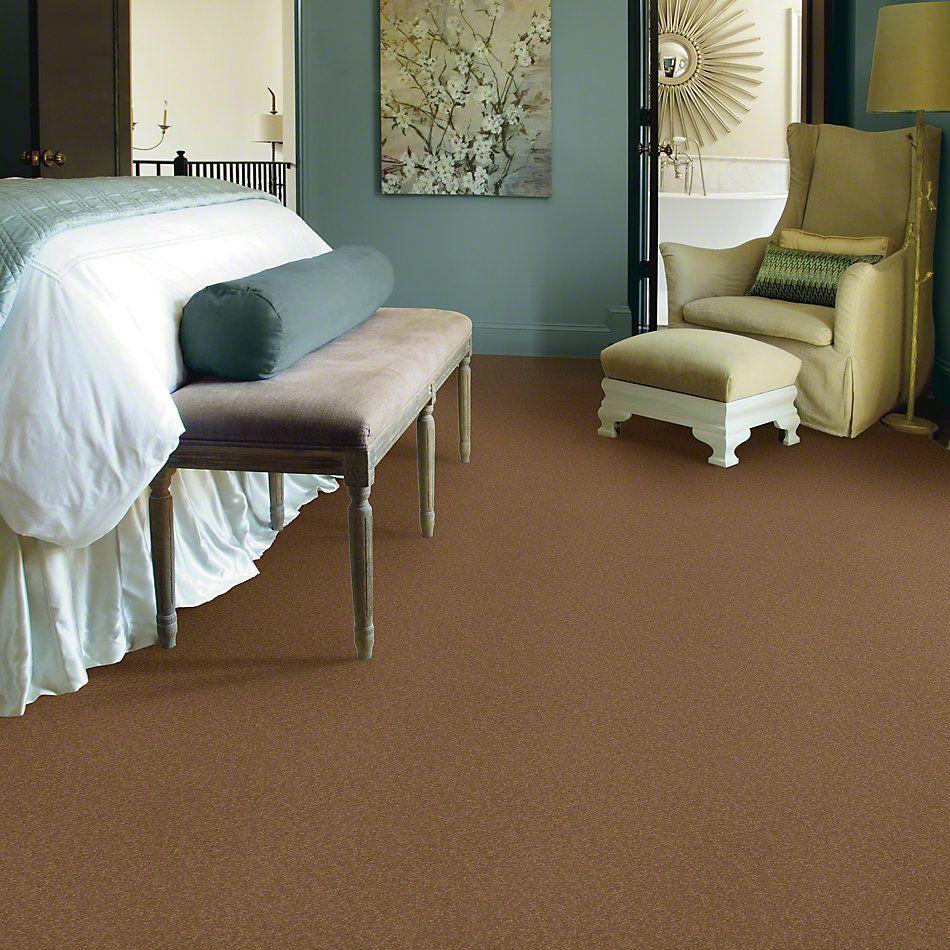 Shaw Floors Shaw Flooring Gallery Truly Modern I 12′ Peanut Brittle 00702_Q263G