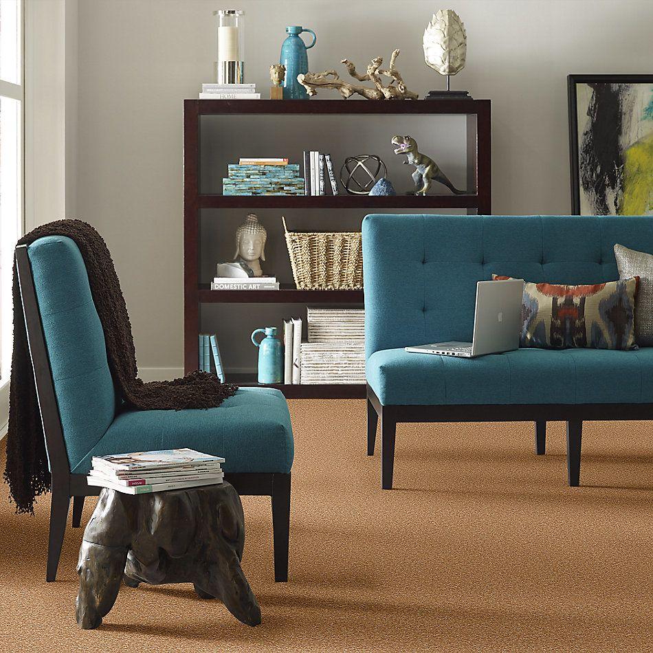 Shaw Floors Shaw Flooring Gallery Practical Magic 15′ Peanut Brittle 00702_Q332G