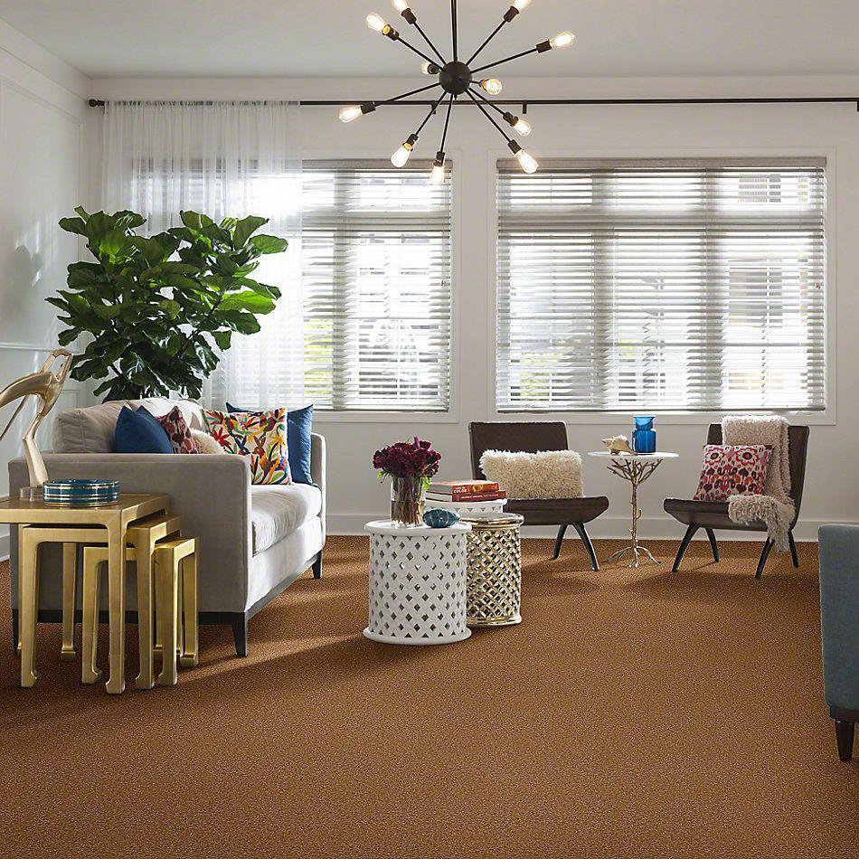Shaw Floors Anso Premier Dealer Great Effect II 12′ Peanut Brittle 00702_Q4329