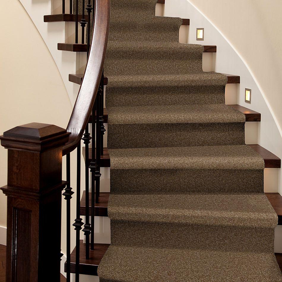 Shaw Floors Queen Harborfields I 12′ Belt Buckle 00702_Q4718