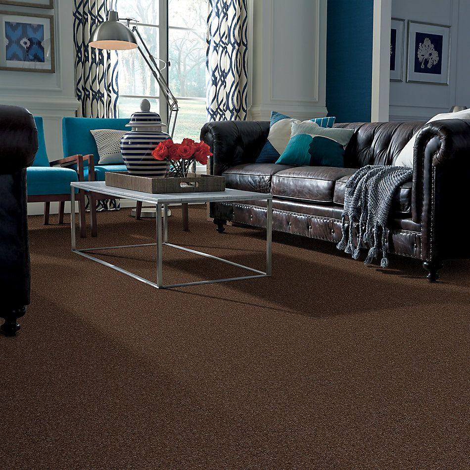 Shaw Floors Roll Special Xy125 Homestead 00702_XY125