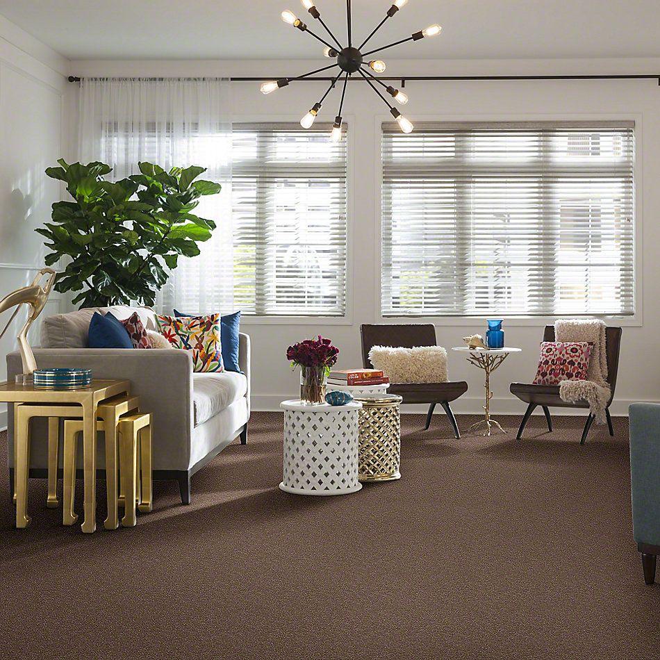 Shaw Floors SFA Enjoy The Moment 1 12 Deer Field 00703_0C013