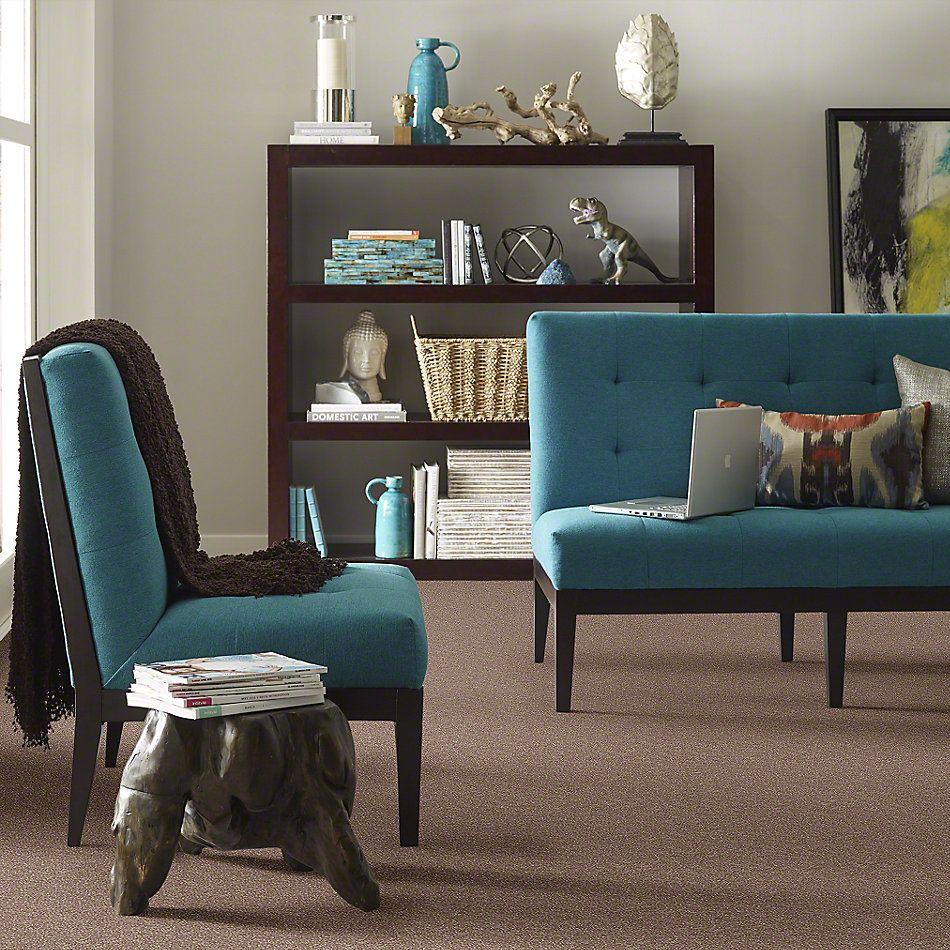 Shaw Floors SFA Enjoy The Moment II 12 Deer Field 00703_0C014