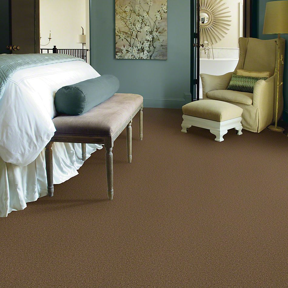 Shaw Floors Shaw Flooring Gallery Highland Cove III 12 Jute 00703_5223G