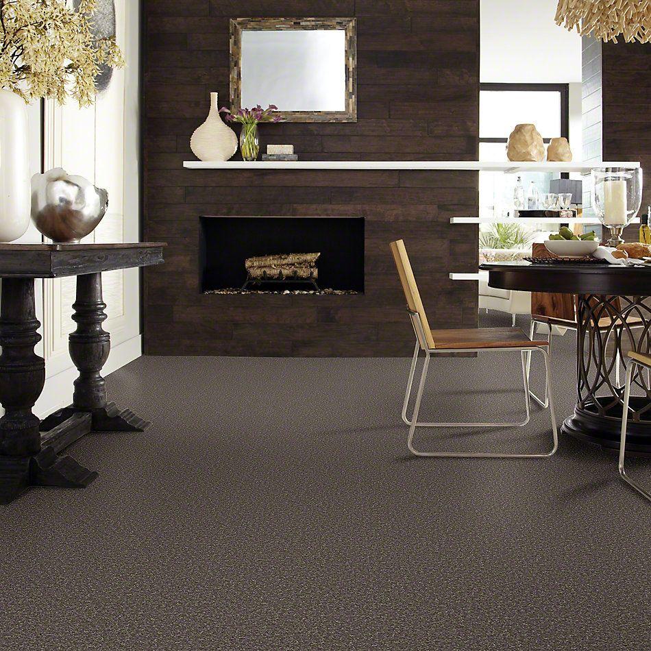 Shaw Floors Shaw Flooring Gallery Union City I 15 Driftwood 00703_5303G