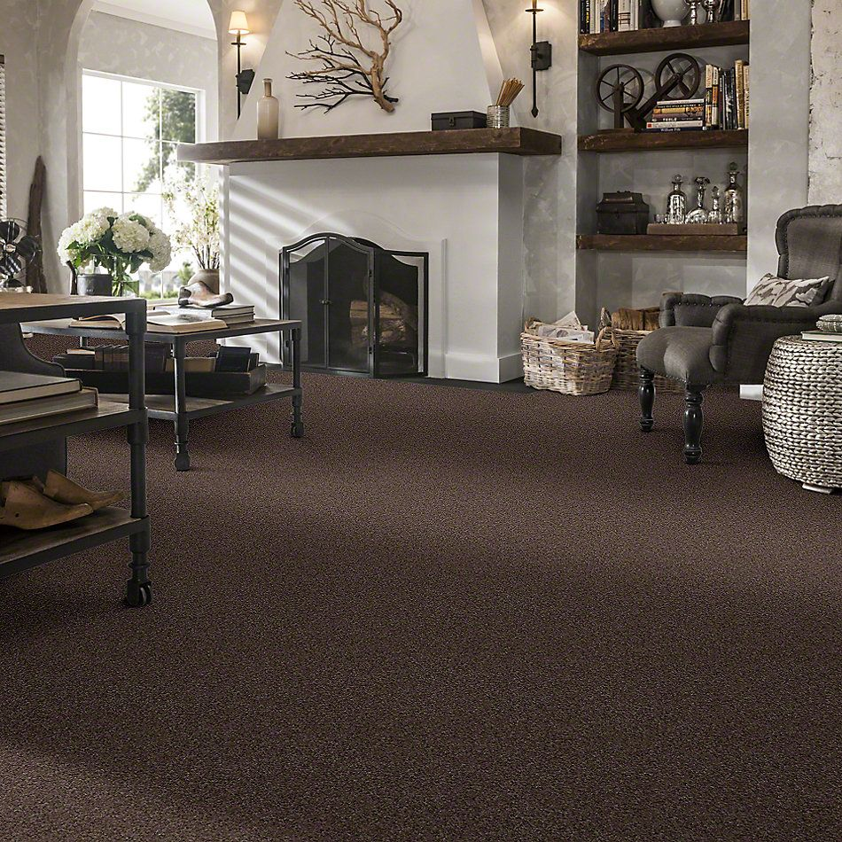 Shaw Floors Shaw Flooring Gallery Challenge Accepted II 15′ Briar Patch 00703_5528G