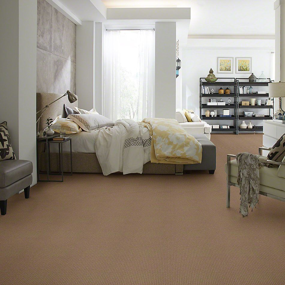 Shaw Floors Shaw Design Center Warm Welcome Perfect Beige 00703_5C587