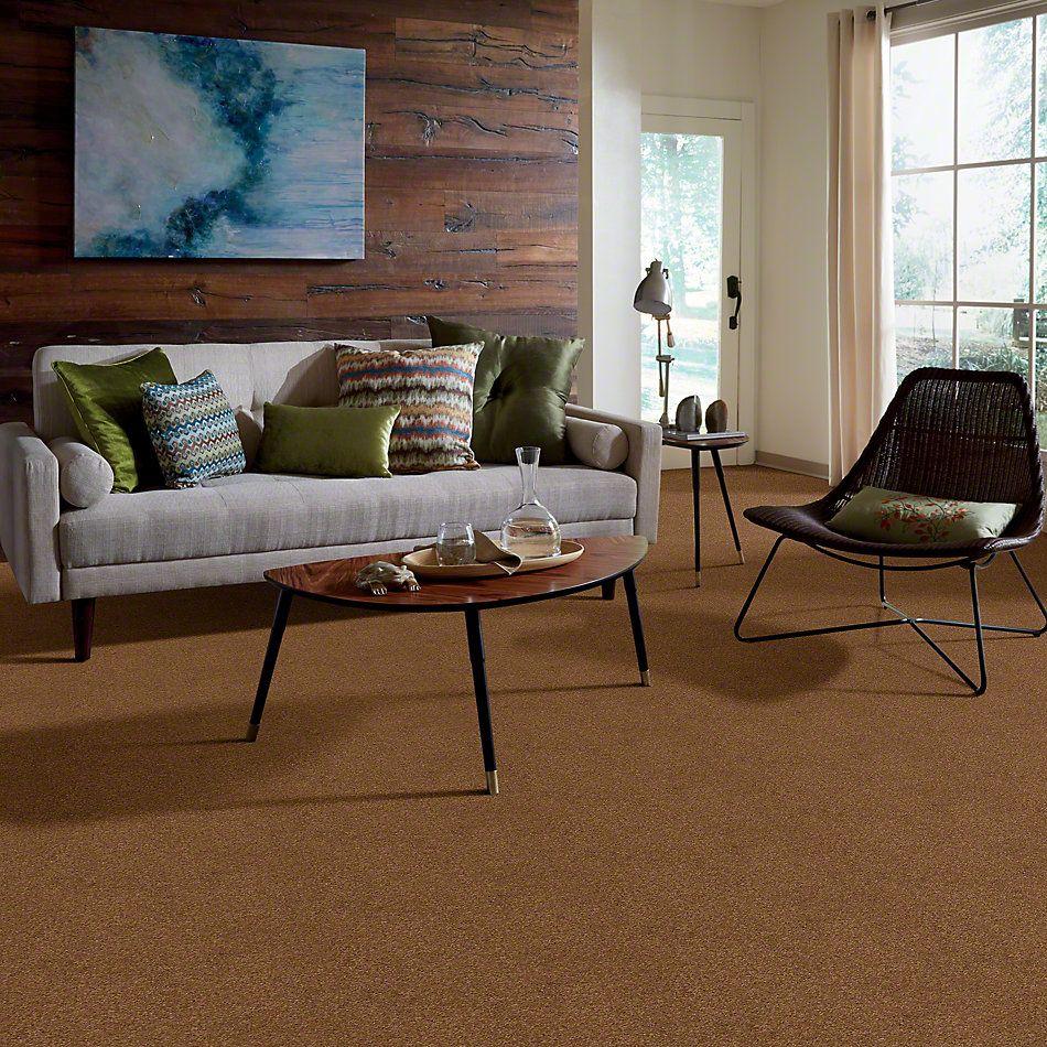 Shaw Floors Shaw Design Center Luxury Bay II English Toffee 00703_5C670