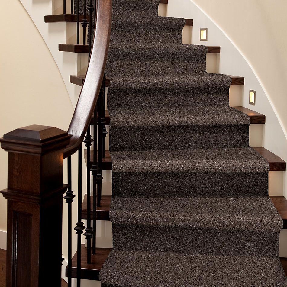 Shaw Floors Shaw Design Center Beautifully Simple II 15′ Briar Patch 00703_5C752