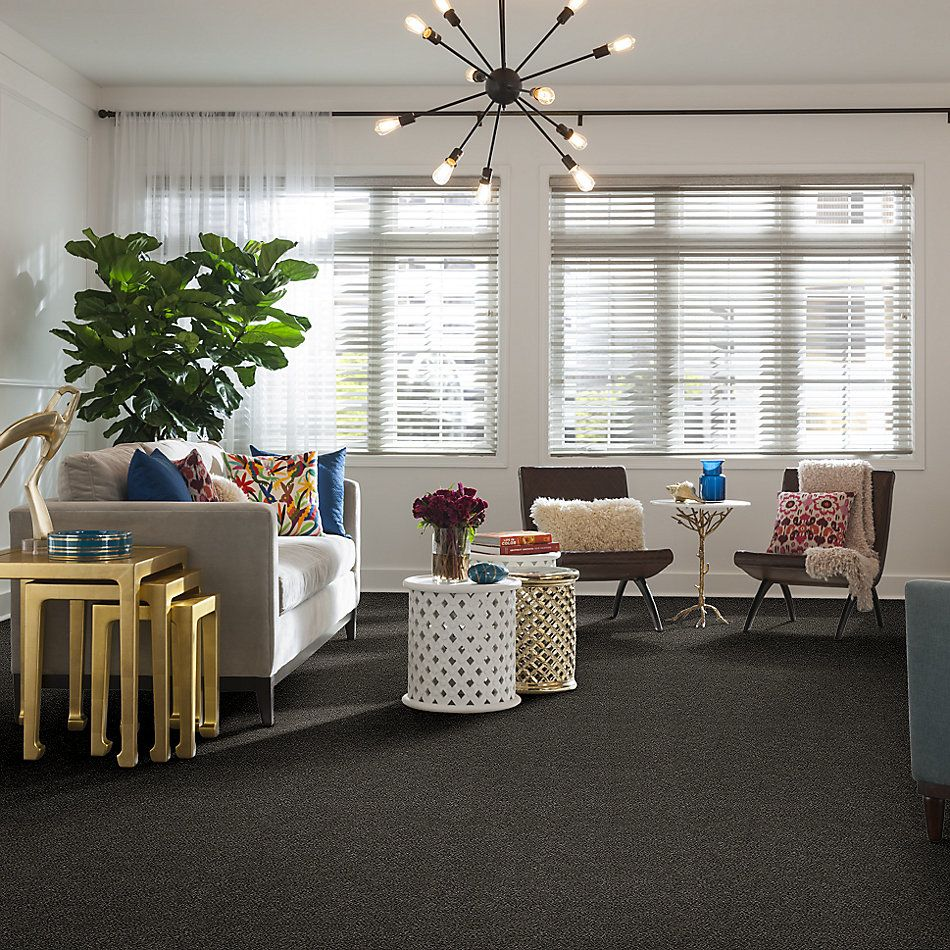 Shaw Floors Simply The Best Boundless Iv Net Shadow 00703_5E506