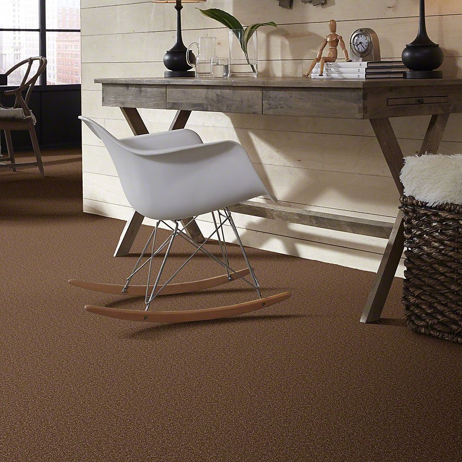 Shaw Floors Queen Sandy Hollow I 15′ Pine Cone 00703_Q4274