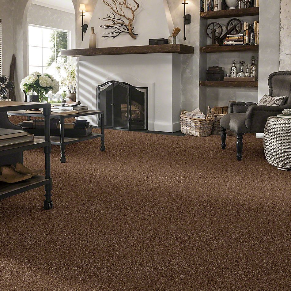 Shaw Floors Sandy Hollow II 15′ Pine Cone 00703_Q4276