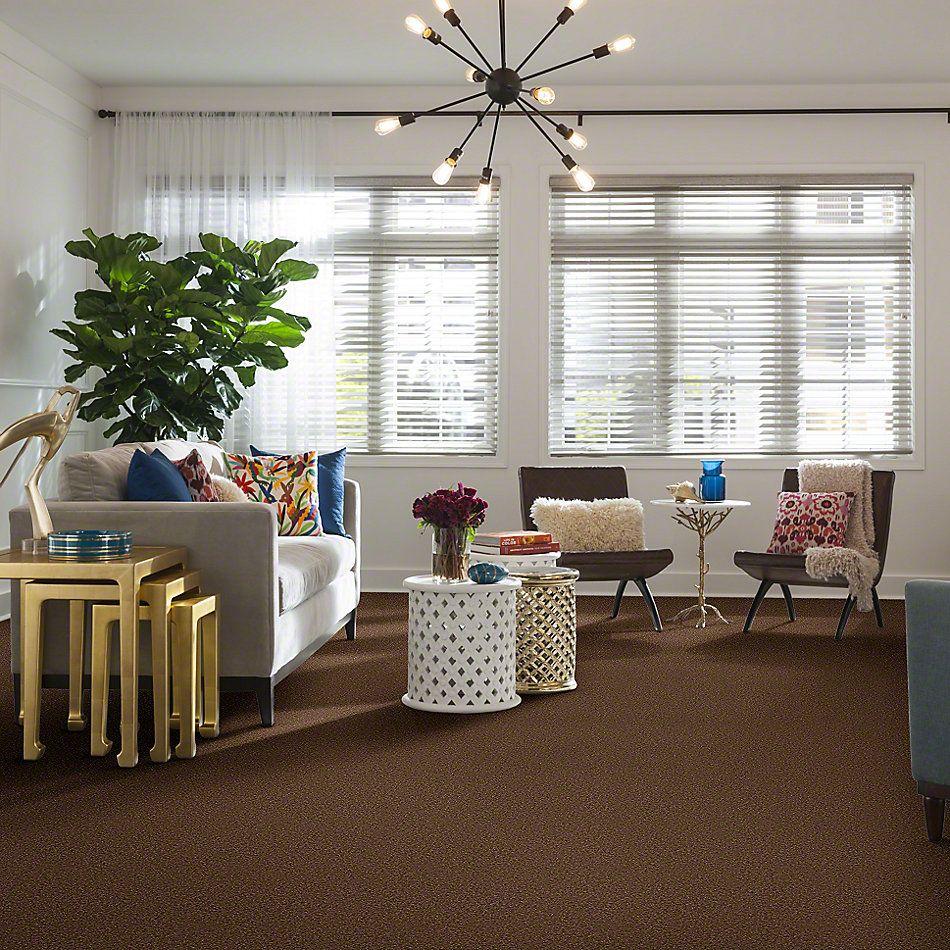 Shaw Floors Sandy Hollow III 12′ Pine Cone 00703_Q4277