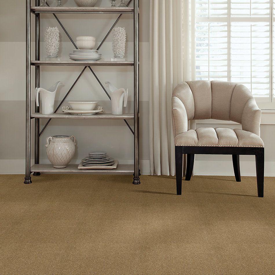 Shaw Floors Caress By Shaw Cashmere II Lg Navajo 00703_CC10B