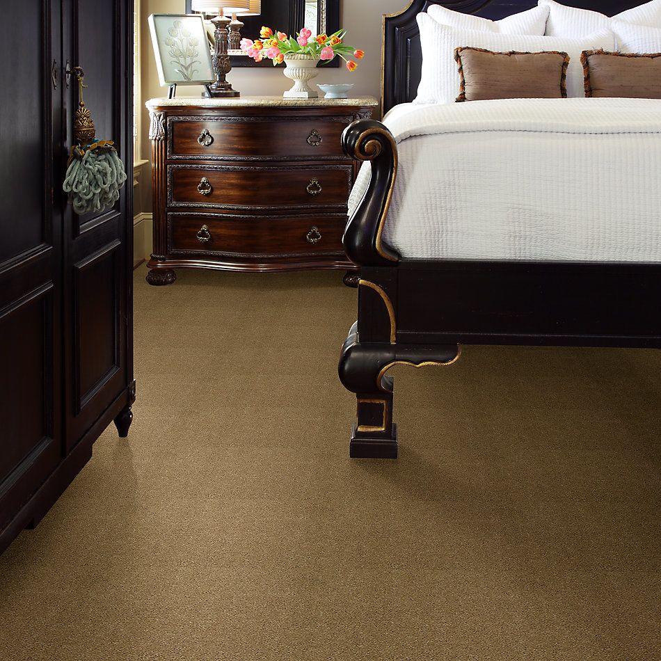 Shaw Floors Caress By Shaw Cashmere Iv Lg Navajo 00703_CC12B