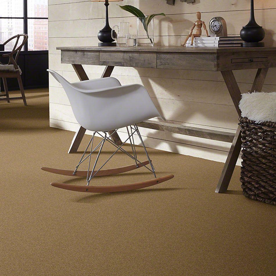 Shaw Floors Caress By Shaw Quiet Comfort I Navajo 00703_CCB30