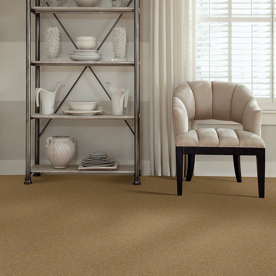 Shaw Floors Caress By Shaw Quiet Comfort Iv Navajo 00703_CCB33
