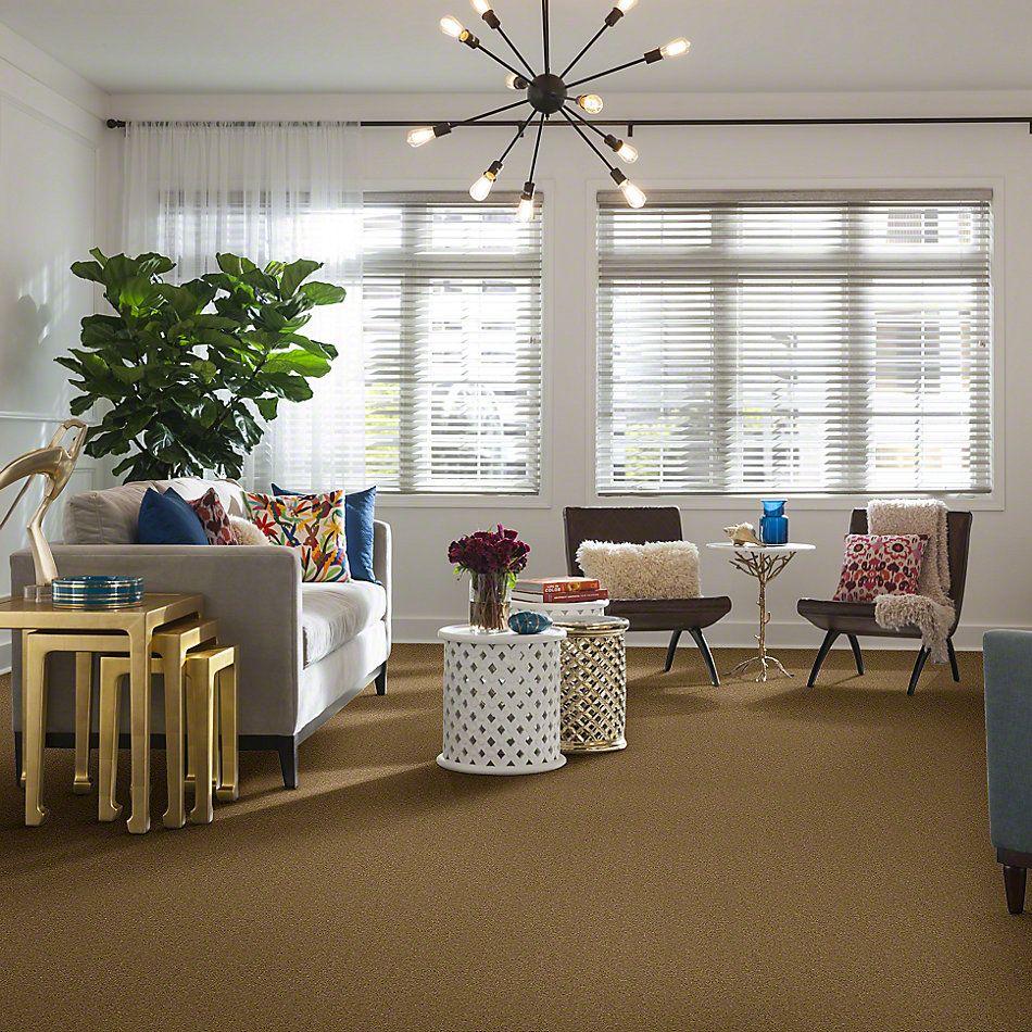 Shaw Floors Caress By Shaw Quiet Comfort Classic II Navajo 00703_CCB97