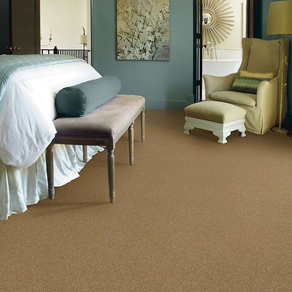 Shaw Floors Caress By Shaw Cashmere Iv Navajo 00703_CCS04