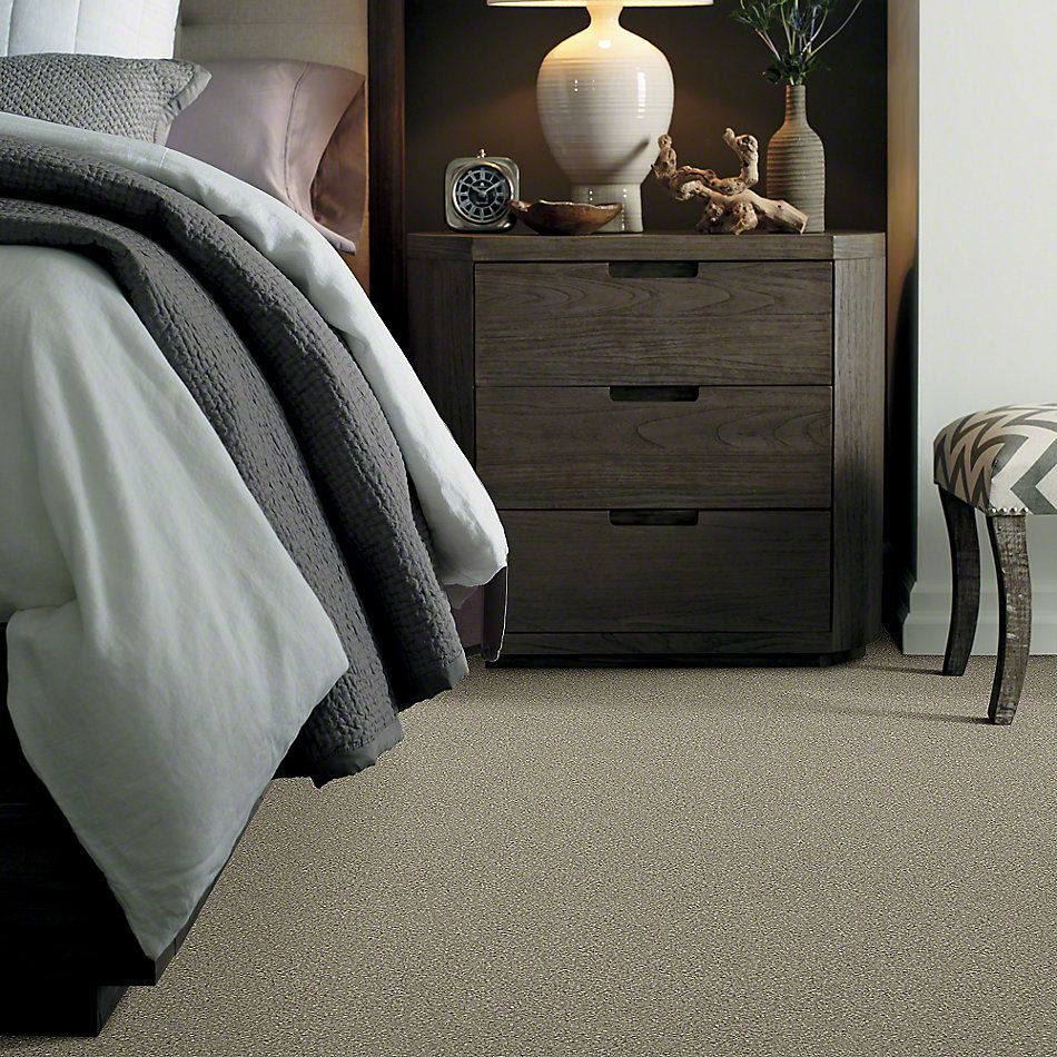 Shaw Floors Clearly Chic Bright Idea III Sand Swept 00703_E0506
