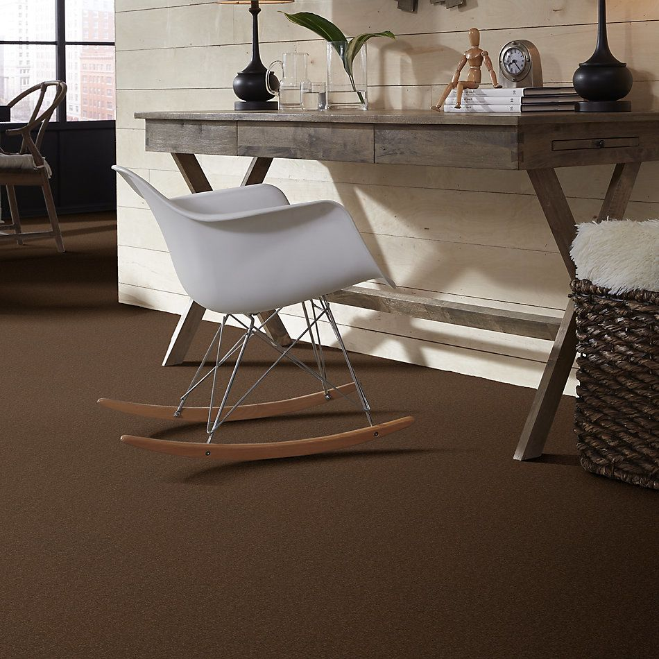 Shaw Floors Sandy Hollow Classic I 12′ Pine Cone 00703_E0548