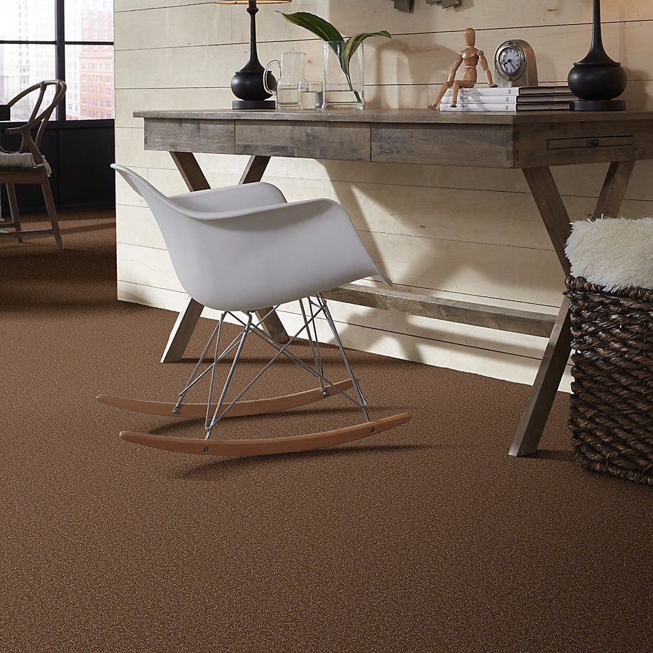 Shaw Floors Sandy Hollow Classic I 15 Pine Cone 00703_E0549