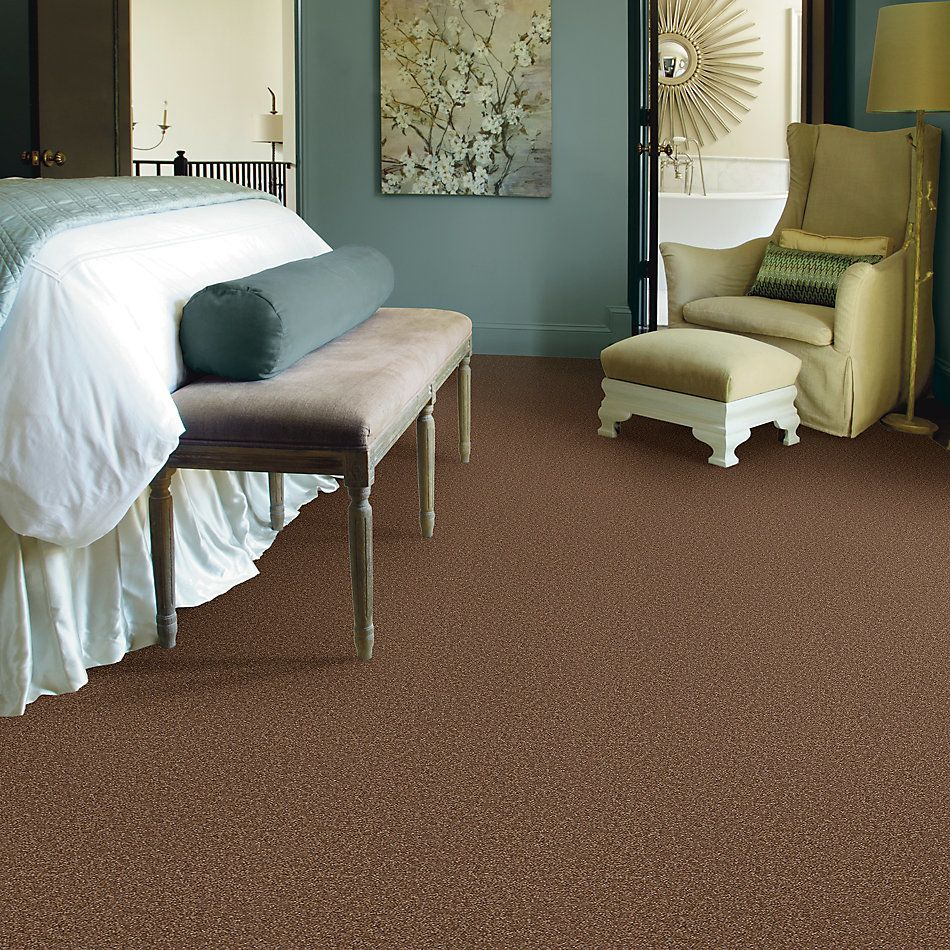 Shaw Floors Foundations Sandy Hollow Classic II 15′ Pine Cone 00703_E0551