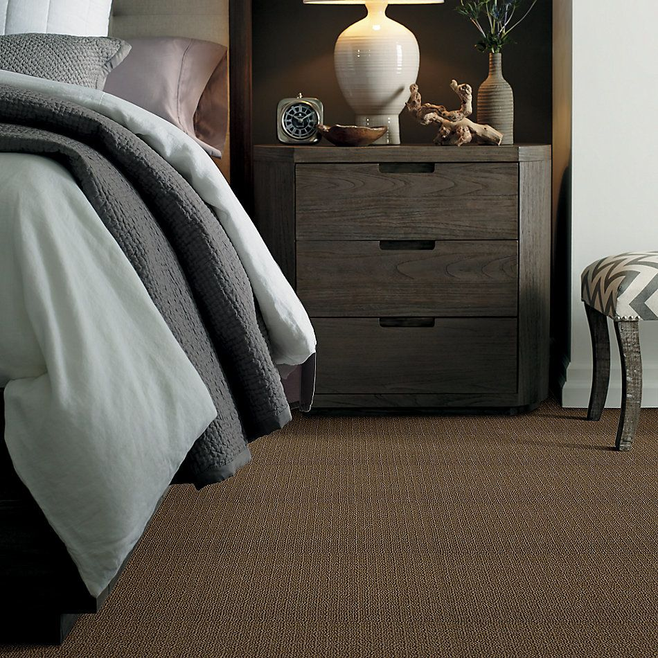 Shaw Floors Value Collections Anso Open 2 Walnut 00703_E0626
