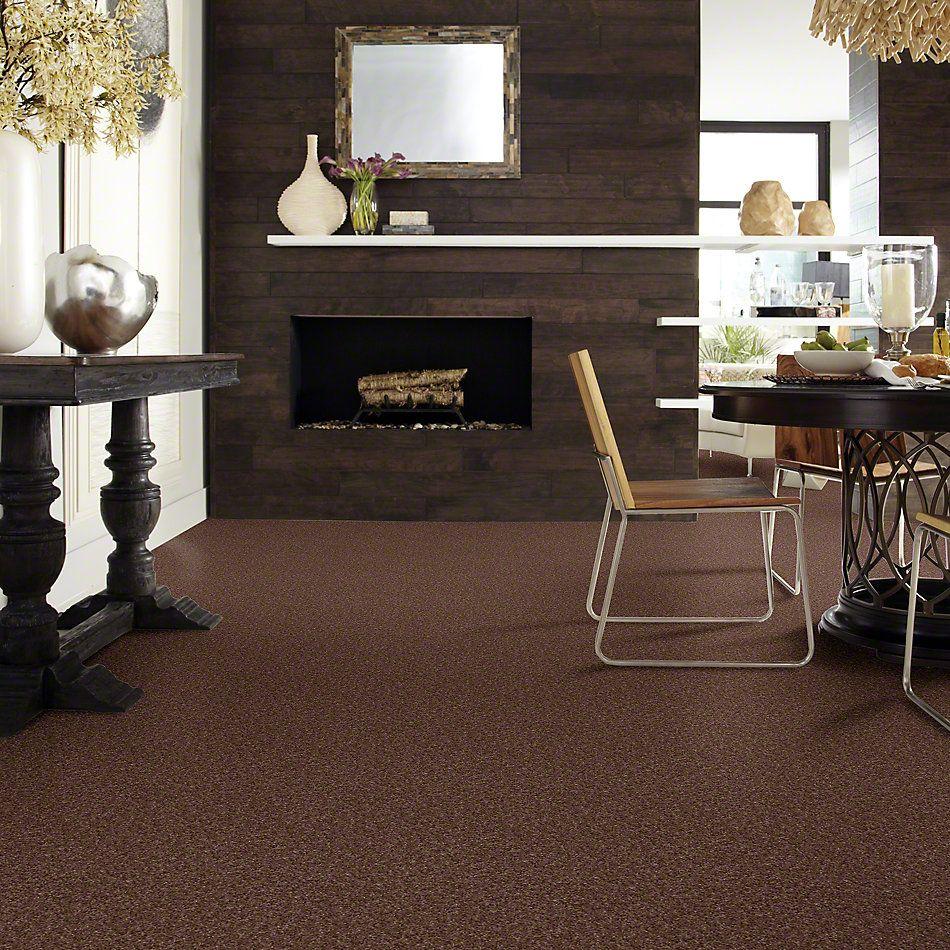 Shaw Floors Keep It Real Rustic Retreat 00703_E0834