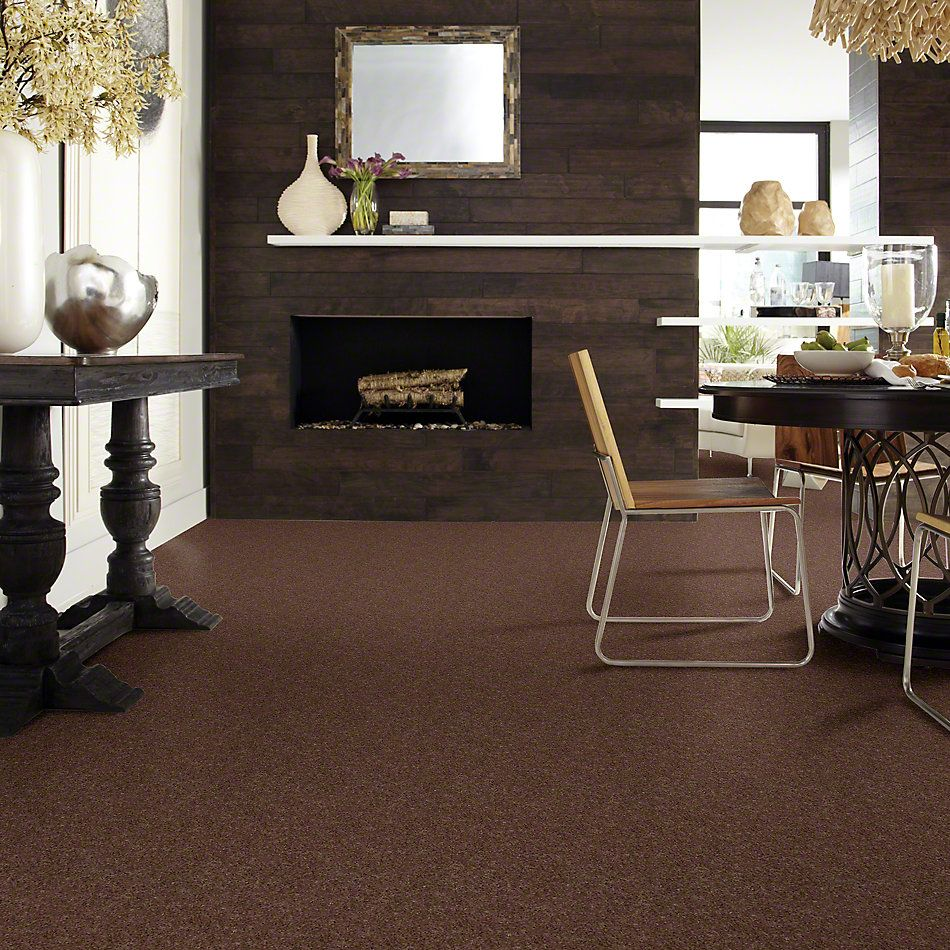 Shaw Floors Value Collections Well Played II 12′ Net Briar Patch 00703_E0840