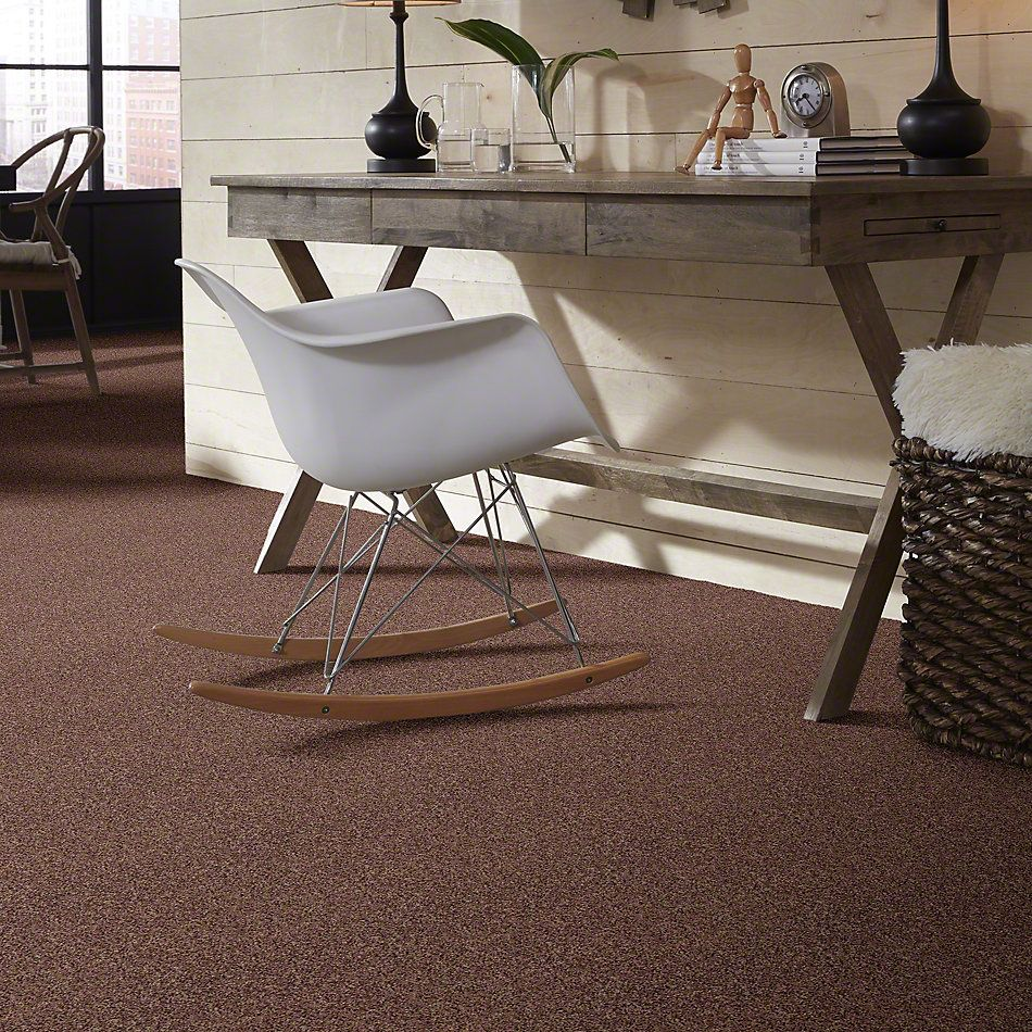 Shaw Floors Value Collections Dazzle Me Texture Net Saddle 00703_E0884