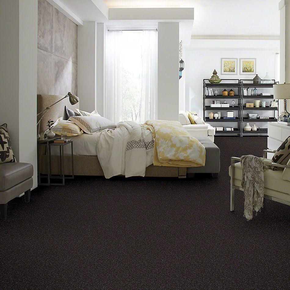 Shaw Floors Value Collections Something Sweet Net Mahogany 00703_E0924