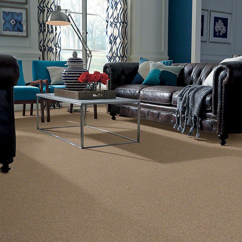 Shaw Floors Origins II Mushroom 00703_E9301