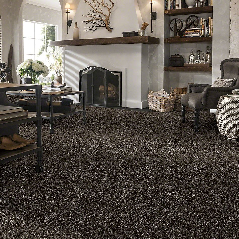 Shaw Floors Value Collections Because We Can I 15′ Net Mystic River 00703_E9313