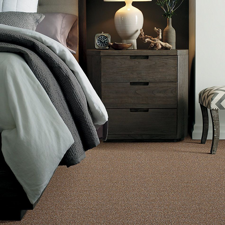 Shaw Floors Simply The Best Super Buy 55 Chestnut E9600_00703