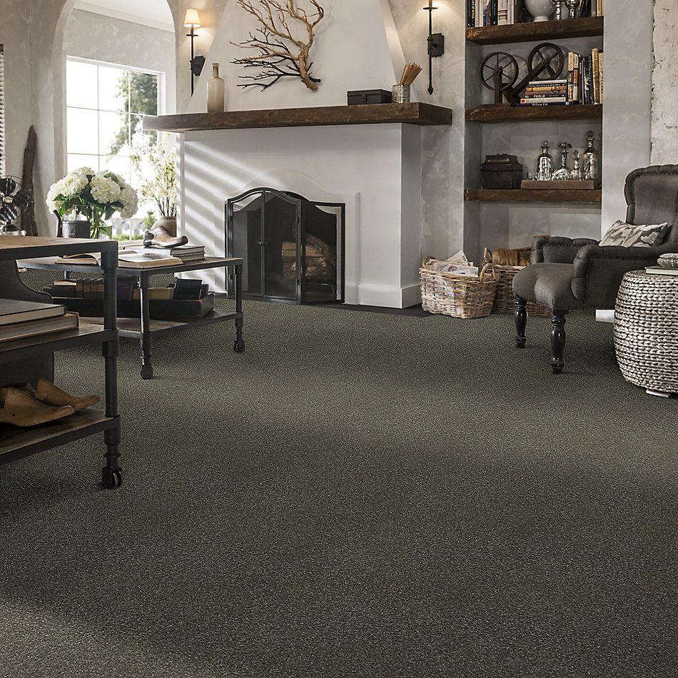 Shaw Floors Bellera Basic Rules Net Portobello 00703_E9782