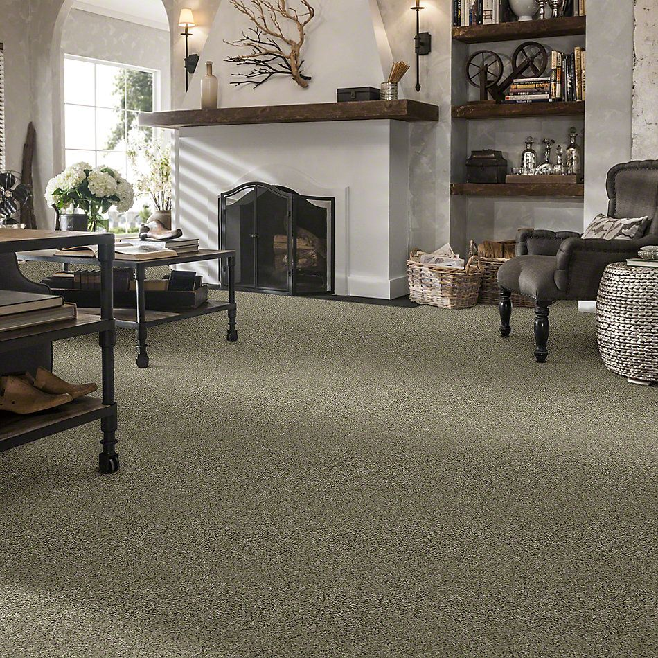 Shaw Floors Value Collections All Set I Net Tree House 00703_E9894
