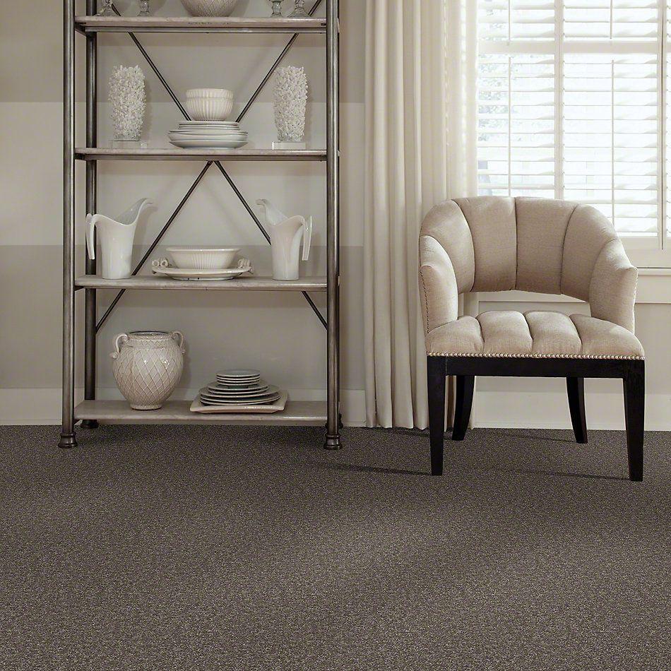 Shaw Floors SFA Drexel Hill II 15′ Driftwood 00703_EA052
