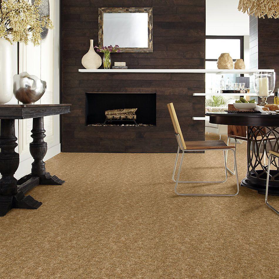 Shaw Floors SFA Change Of Pace Log Cabin 00703_EA471