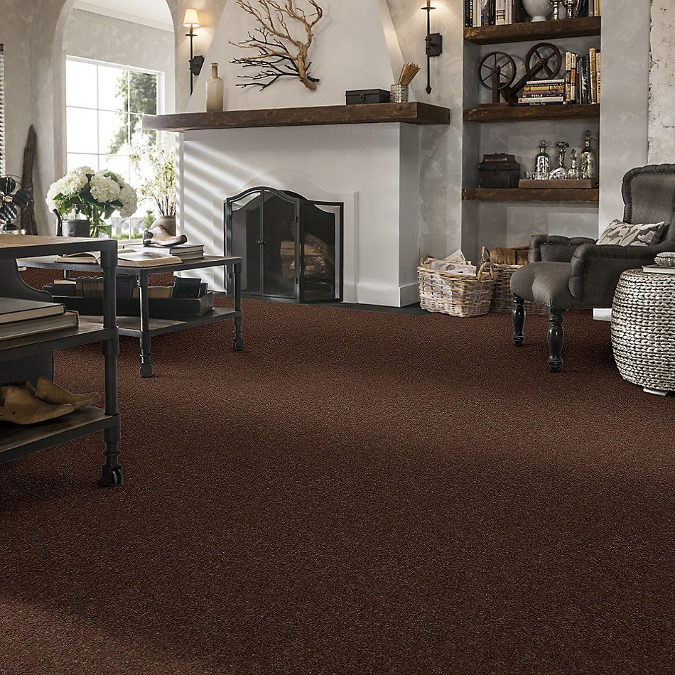 Shaw Floors SFA Turn The Page II 12′ Briar Patch 00703_EA524