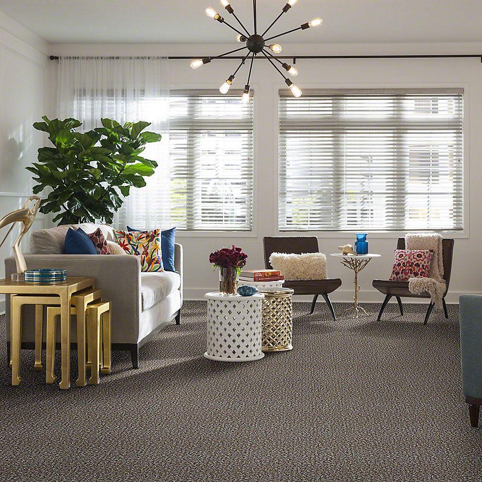 Shaw Floors Property Solutions Villanova II 12 Herbal Tea 00703_HF606