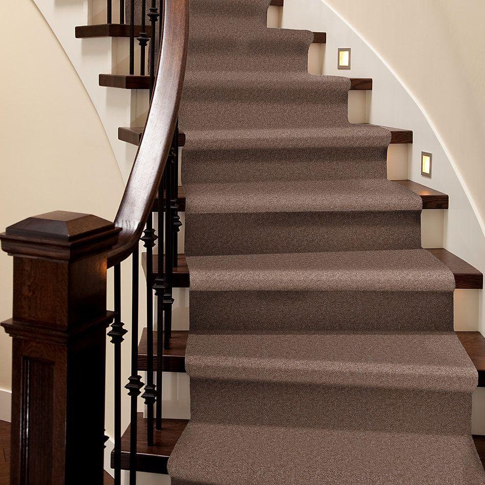 Shaw Floors Home Foundations Gold Warrior Classic Warm Mink 00703_HGC80