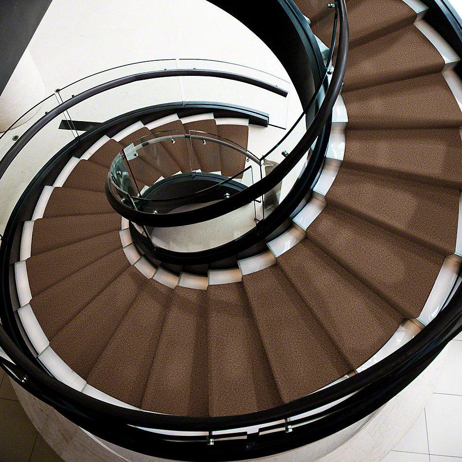 Shaw Floors Shaw Flooring Gallery Truly Modern III 15′ Pine Cone 00703_Q268G