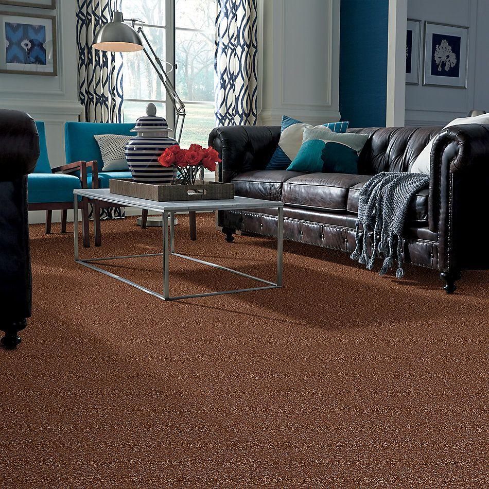 Shaw Floors SFA Hayward Barn Owl 00703_Q3898