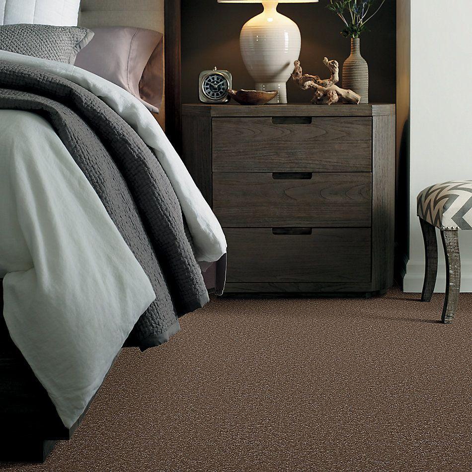 Shaw Floors Queen Harborfields II 15′ Jute 00703_Q4721