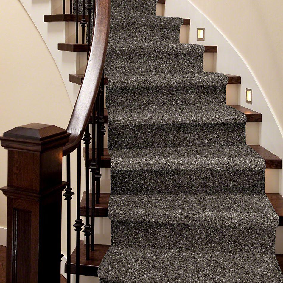 Shaw Floors Queen Point Guard 15′ Driftwood 00703_Q4885