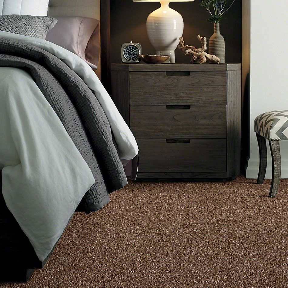 Shaw Floors Shaw Design Center Sweet Valley I 15′ Pine Cone 00703_QC421