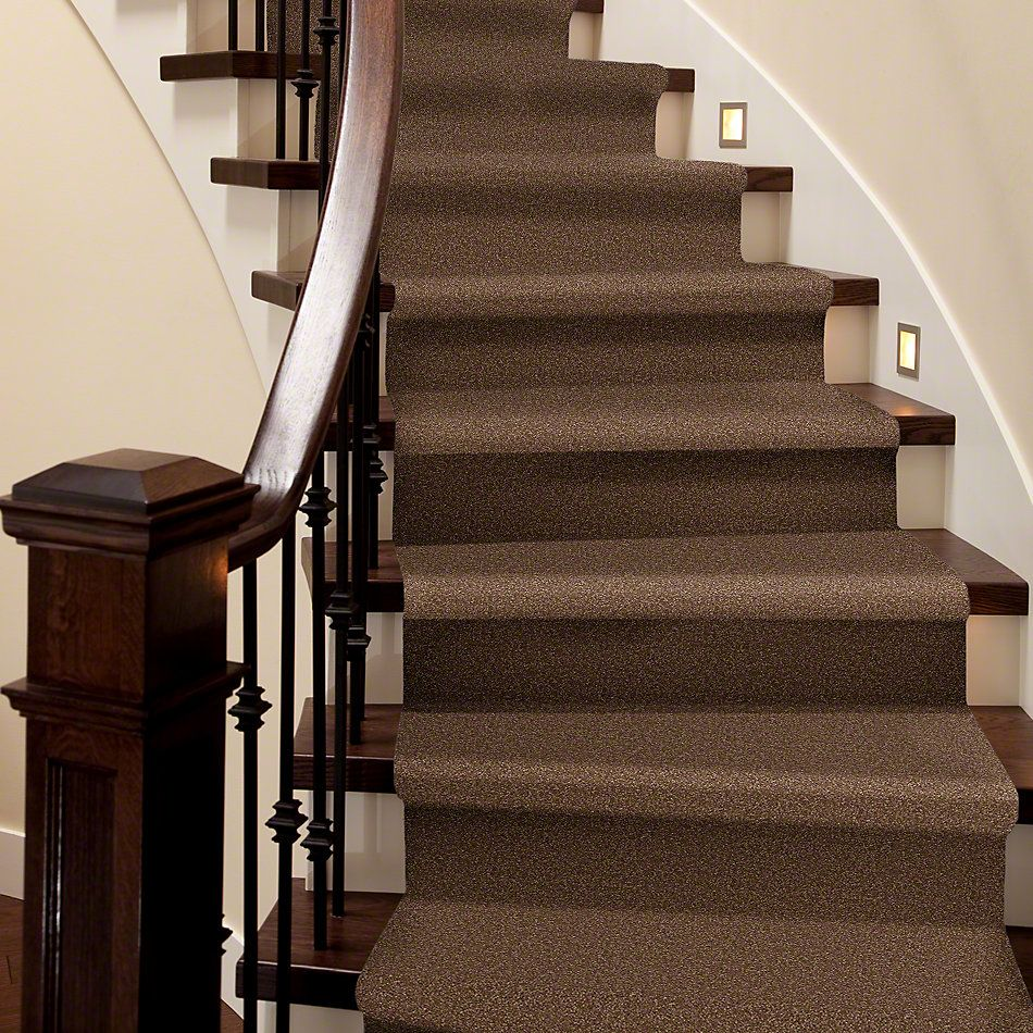 Shaw Floors Shaw Design Center Sweet Valley II 12′ Pine Cone 00703_QC422